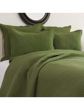 Manchester Fern Cotton Quilt 3 Piece Set   King/Standard Sham   3 Piece by C&F Home
