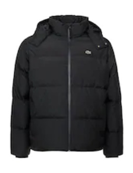 Plus    Down Jacket by Lacoste