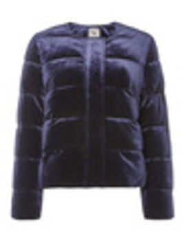 Navy Padded Bomber Jacket by Tu
