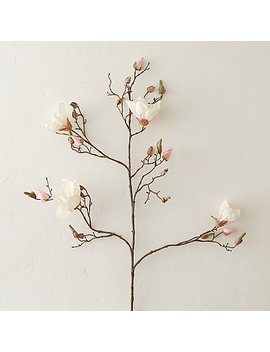 "43"" Faux Magnolia Branch, Pink by Terrain"