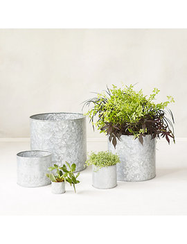Habit + Form Cylinder Pot by Terrain