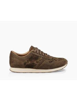 Trigo Suede Camo Sneaker by Ugg