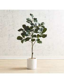 Faux Fiddle Leaf Fig Tree by Pier1 Imports