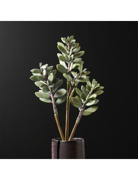 Faux Succulent Stem by Crate&Barrel
