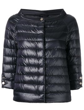 Cropped Sleeves Padded Jacket by Herno