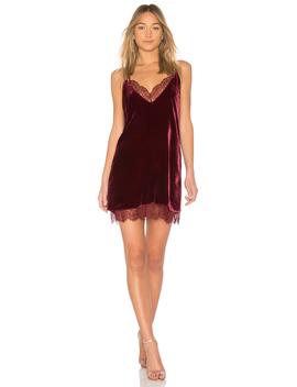 The Lara Dress by Cami Nyc