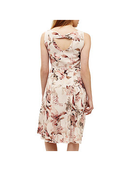 Phase Eight Vivien Floral Print Dress, Pink Cameo by Phase Eight