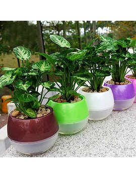 Mkono 3 Pack Self Watering Planter Plastic Flower Pot 5 Inch (Mixed Colors) by Mkono