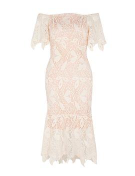 Tanya Lace Shift Dress by Coast