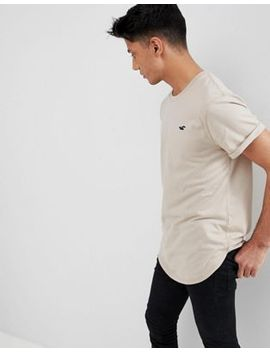 Hollister Curved Hem Crew Neck T Shirt Seagull Logo In Taupe by Hollister