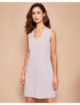 Scalloped Edge Shift Dress by Ted Baker
