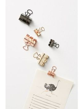 Poppin Metallic Binder Clip Set by Poppin