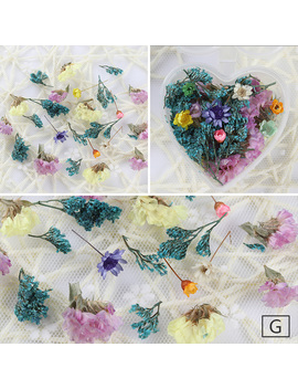 Mixed Dried Flowers Nail Art Decoration Preserved Flower With Heart Shape Box Diy Tips Manicure 3 D Nail Art Decoration by Born Pretty Co.,Ltd.