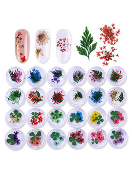 3 D Real Dried Flower Decoration For Uv Gel Nail Art Tips Manicure Nail Stickers by Unbranded