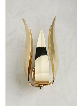 Toia Sconce by Anthropologie