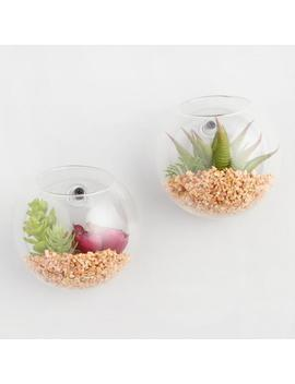 Hanging Terrarium With Faux Succulents Set Of 2 by World Market