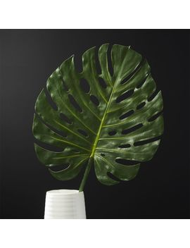 Large Faux Monstera Leaf by Crate&Barrel