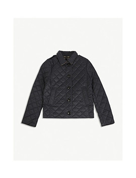 Mini Ashurst Quilted Jacket 4 14 Years by Burberry
