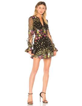 Kensington Dress by Lovers + Friends