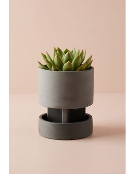 Agnes Elevated Planter by Anthropologie