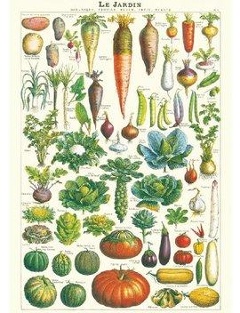 """Cavallini & Co. Le Jardin Decorative Paper Sheet 20""""X28"""" by Cavallini & Co."""