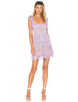 Valentina Lace Mini Dress by For Love & Lemons
