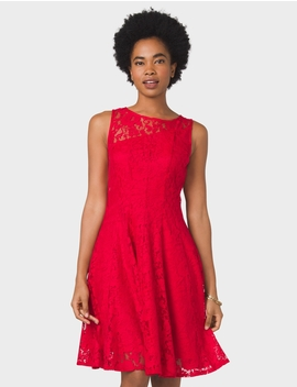 Floral Lace Seamed Dress by Dressbarn