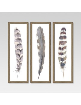 "12""X36"" Framed 3 Pack Feathers   Threshold™ by Shop Collections"