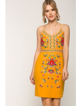 Wanderer Embroidered Bodycon Dress by A'gaci