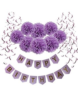 Wartoon Happy Birthday Banner Bunting With 8 Tissue Paper Pom Poms Flowers And 15 Hanging Swirl Decorations For Birthday Party Decorations   Purple by Wartoon