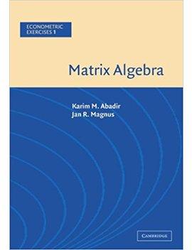 Matrix Algebra (Econometric Exercises, Vol. 1) by Karim M. Abadir