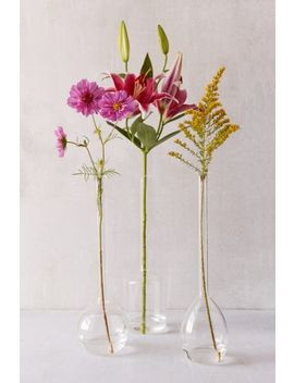 Serafina Assorted Vase Trio   Set Of 3 by Urban Outfitters