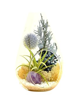 "Bliss Gardens Air Plant Terrarium Kit With 7"" Teardrop Glass / Purple Amethyst Crystal / Shabby Chic by Bliss Gardens"