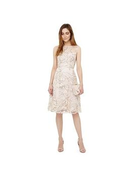 Phase Eight   Ivory Sable Embroidered Dress by Phase Eight