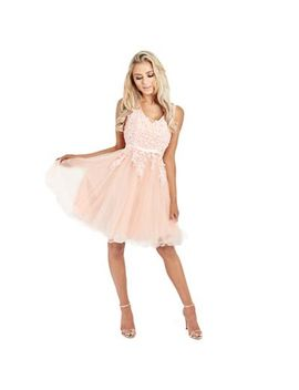 Sistaglam   Blush 'tenny' Mesh Embroidered Lace Skater Prom Dress by Sistaglam