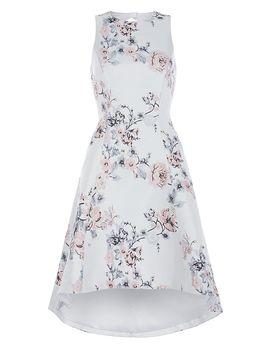 Anneka Jacquard Dress by Coast