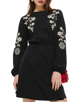 Embroidered Balloon Sleeve Skater Dress by Topshop