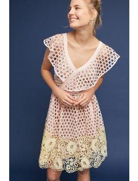 Daisy Eyelet Dress by Donna Morgan