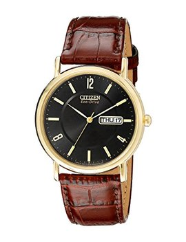 Citizen Men's Bm8242 08 E Eco Drive Gold Tone Stainless Steel Watch With Brown Leather Band by Citizen