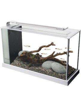 Fluval Spec V Aquarium Kit, 5 Gallon, White by Fluval