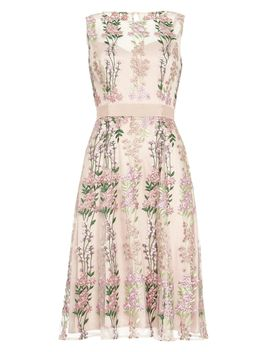 Fodula Embroidered Dress by Phase Eight