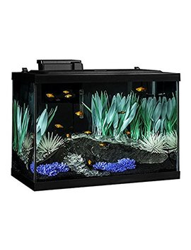 Tetra 20 Gallon Complete Aquarium Kit W/ Filter Heater Led & Plants by Tetra