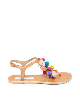 Circus by Steve Madden