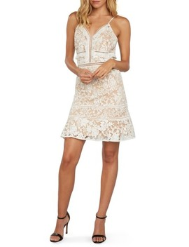 Embroidered Mesh Minidress by Willow & Clay