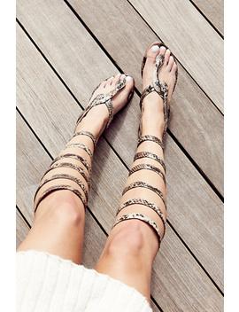 Boa Gladiator Sandal by Free People