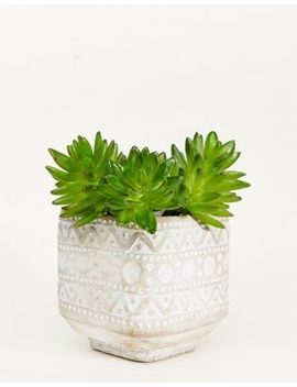 Sass & Belle Concrete Patterned Planter by Sass & Belle