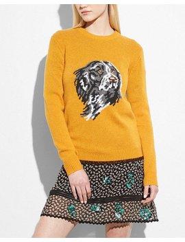 Dog Intarsia Sweater by Coach