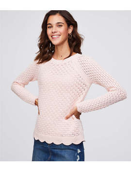 Petite Scalloped Pointelle Sweater by Loft