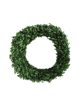 Boxwood Preserved Wreath by Creative Co Op
