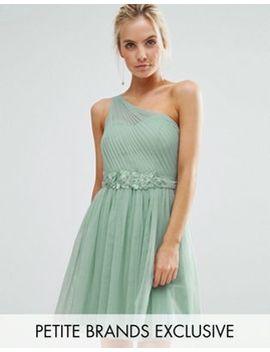 Little Mistress Petite Full Prom Tulle One Shoulder Mini Dress With Lace Applique by Little Mistress Petite